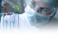 ¿Cómo elegir el combustible para la biochimenea?