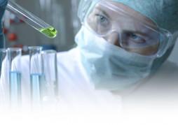 ?Como elegir el combustible para la biochimenea?