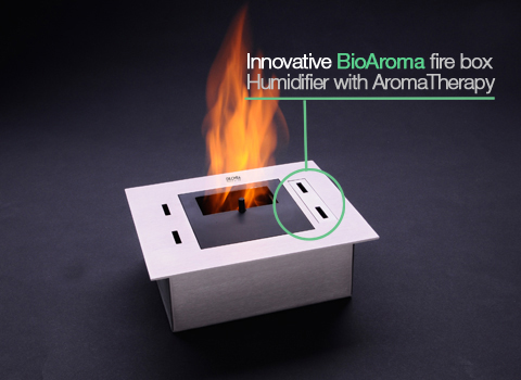 biokominek-Bioethanol Burners Firebox 01 bio fire